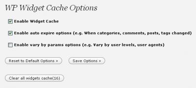 Einstellungen von Widget Cache: Auto-Expire