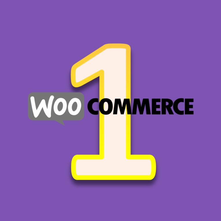 WooCommerce lernen - Modul 1