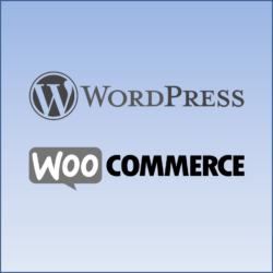 wordpress und woocommerce consulting